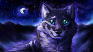 Night Wolf 1920x1080 wallpaper