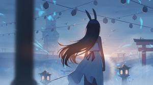 Anime Anime Girls Long Hair Birds Clouds Sunset Sky Flowers Night Lanterns Asian Architecture Brunet 4000x2000 Wallpaper