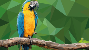 Facets Macaw 3840x2160 wallpaper