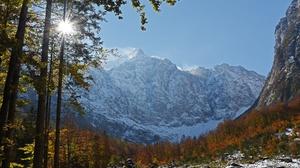 Fall Forest Julian Alps Mountain Slovenia Sunbeam 4800x3008 Wallpaper