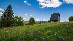 Alps House Meadow Switzerland Tree 4000x2580 Wallpaper