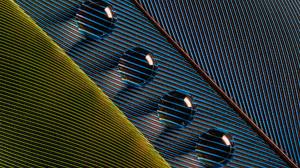Photography Lines Bruno Militelli Water Drops Leaves Shadow Macro Closeup 1920x1279 Wallpaper