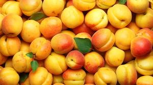 Apricot Fruit 5616x3744 Wallpaper