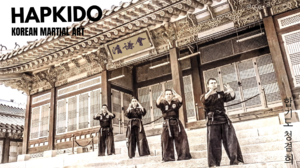 Korean Hapkido 1920x1080 wallpaper