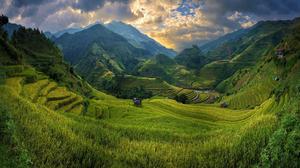Field Mountain Rice Terrace Valley Vietnam 1925x1080 Wallpaper