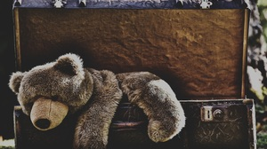 Stuffed Animal Suitcase Teddy Bear 4877x3160 Wallpaper