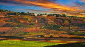 Landscape Vineyard 1920x1279 Wallpaper