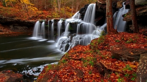 Earth Foliage Forest Waterfall 2048x1280 Wallpaper