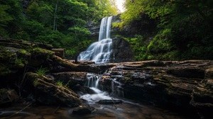 Nature River Waterfall Forest 1920x1277 Wallpaper