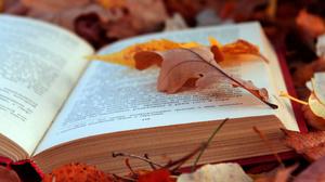 Book Fall Leaf Mood Nature Season 2048x1365 Wallpaper