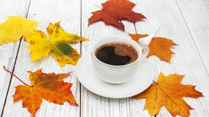 Coffee Cup Drink Leaf 3782x2447 Wallpaper