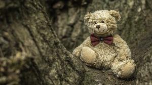 Stuffed Animal Teddy Bear 2048x1365 Wallpaper