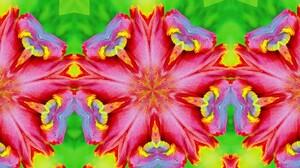 Artistic Digital Art Colors Pattern Pink Green 1920x1080 Wallpaper