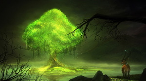 Fantasy Forest 1920x1200 Wallpaper