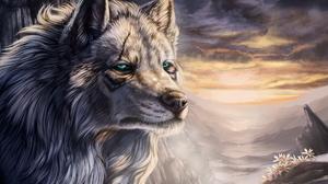 Animal Landscape Wolf 2662x1817 Wallpaper