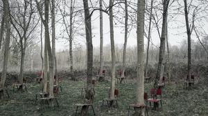 Chair Nature Tree Trunk 2048x1300 Wallpaper
