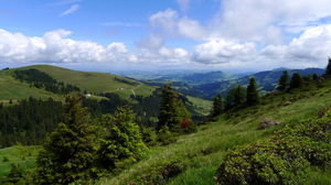 Cloud Forest Landscape Mountain Panorama Scenic Sky 2570x1715 Wallpaper