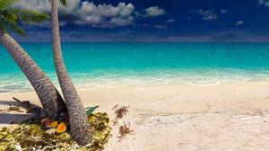 Sand Sea Palm Tree 3840x2160 wallpaper