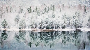 Forest Lake Nature Reflection Winter 2048x1152 Wallpaper
