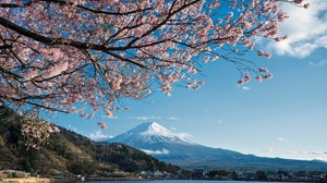 Japan Lake Sakura Spring 2048x1366 wallpaper