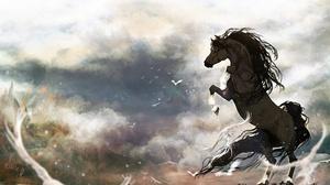 Fantasy Horse 2560x1600 wallpaper