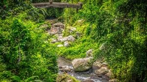 Stream Stone Greenery 4096x2722 Wallpaper