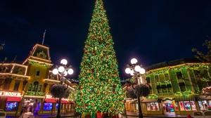 California Christmas Christmas Lights Christmas Tree Disneyland 2560x1820 Wallpaper