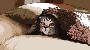 Artistic Cat Pet 2048x1280 Wallpaper