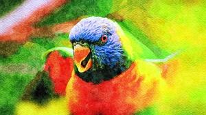 Parrot Bird Artistic 1920x1080 Wallpaper