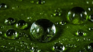 Macro Water Drop 2974x1321 Wallpaper