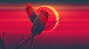 Artistic Bird Eclipse 2560x1440 Wallpaper