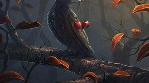 Animal Crow 2560x2048 Wallpaper