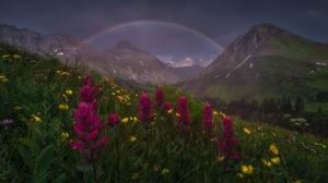 Flower Landscape Mountain Nature Rainbow 1920x1277 Wallpaper