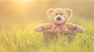 Basket Stuffed Animal Teddy Bear 5472x3263 Wallpaper