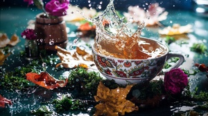 Cup Drink Fall Flower Leaf Tea Water 2000x1333 Wallpaper