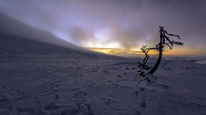 Nature Winter Dark Sunlight Cold Snow Ice Outdoors 3840x2160 wallpaper