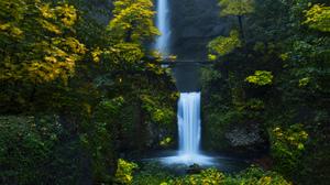 Forest Waterfall 4444x2500 wallpaper
