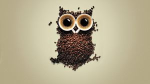 Coffee Funny Owl Artistic Coffee Beans 1920x1200 Wallpaper