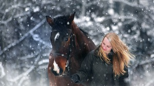 Animal Blonde Girl Horse Long Hair Winter Woman 4500x3000 Wallpaper