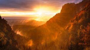 Forest Sunrise Valley 5472x3648 Wallpaper