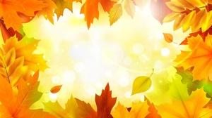Fall Leaf Maple Leaf 3000x2000 Wallpaper