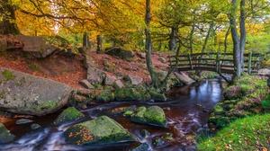 Forest Nature Park Stone River Bridge 2850x1771 wallpaper