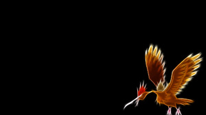 Fearow Pokemon Flying Pokemon 1920x1200 Wallpaper
