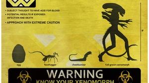 Movie Alien 1600x1067 wallpaper