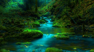 Greenery Moss Nature Stone Stream 2000x1350 Wallpaper