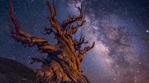 Sky Stars Night Milky Way Starry Sky 2048x1463 Wallpaper