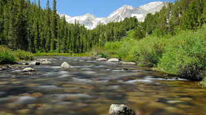 Landscape Nature Forest Water River Mountains 1920x1200 Wallpaper