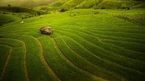 Nature Landscape Thailand Alone House Field Farm Hills Rice Paddy 2000x1334 Wallpaper
