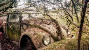 Old Wreck Car Vehicle Volkswagen Rust Moss Plants Trees Branch Twigs Outdoors Volkswagen Beetle HDR 2845x1707 Wallpaper