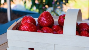 Food Strawberry 1920x1280 Wallpaper